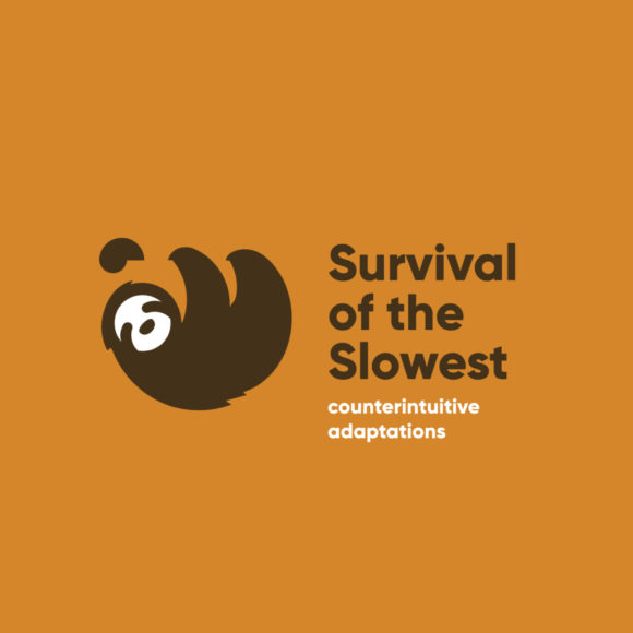 Survival of the Slowest